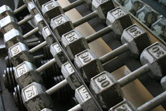 Exercise weights in rack. A view of several rows of exercise weights stored in a rack by weight Royalty Free Stock Image