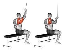 exercising Één overhandigd lat pulldown vector illustratie
