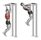 exercising Apretón reverso tirón-UPS en los músculos traseros Foto de archivo libre de regalías