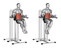 exercising Aumentos oblicuos en barrases paralelas