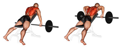 Exercising. Barbell Incline Row Stock Photo