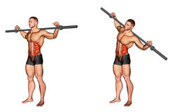 Exercising. Barbell Side Bent vector illustration