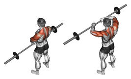 exercising Barras verticales con la barra