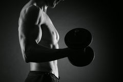 Exercising biceps with dumbbells Stock Images