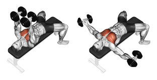 Exercising. Breeding dumbbells lying