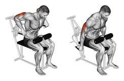 exercising Clava el simulador en el músculo del tríceps stock de ilustración