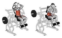 exercising Cuerpo de doblez a los músculos abdominales y a las piernas stock de ilustración