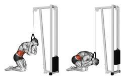 exercising Cuerpo que se encrespa vía el simulador del bloque libre illustration