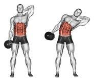 exercising Cuestas laterales de la colocación stock de ilustración