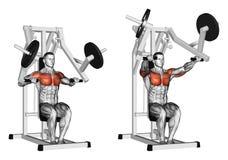 exercising De simulator van de de sterktegymnastiek van de pershamer Stock Afbeeldingen