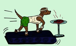 Exercising dog. Illustration of a dog running in the gym Royalty Free Stock Image