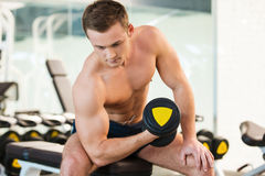 Exercising with dumbbell. Royalty Free Stock Photo