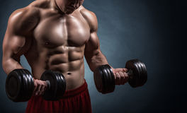 Exercising with dumbbell. Fit muscular man exercising with dumbbell on dark background Stock Photography