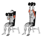 Exercising. Dumbbell Seated Shoulder Press Parallel Grip. Dumbbell Seated Shoulder Press Parallel Grip. Exercising for bodybuilding. Target muscles are marked in Stock Photo