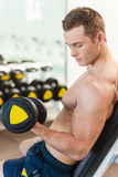 Exercising with dumbbells. Royalty Free Stock Photos
