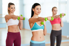 Exercising with dumbbells. Stock Image