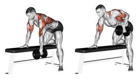 exercising Einddomoor met één hand Stock Foto