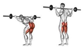 exercising Elevación del torso con un barbell ilustración del vector