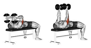 Exercising. Extension arms with dumbbells lying vector illustration