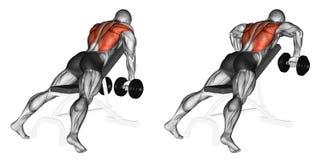 exercising fila de la pesa de gimnasia del brazo del banco dos de la pendiente libre illustration