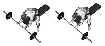 Exercising. Flexion of the wrist with a barbell un Stock Image
