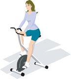 Exercising in gym. Illustration of a female exercising in gym Stock Image
