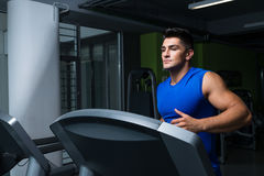 Exercising in gym Royalty Free Stock Image
