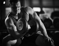 Exercising in gym stock photography