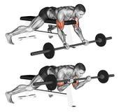 exercising Het liggen hoge bank barbell krul stock illustratie