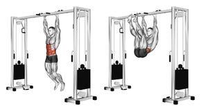 exercising Het trekken van de benen aan de wapens die op de dwarsbalk hangen Stock Fotografie