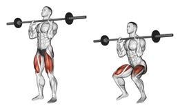 exercising Hurkzit op zijn borst Stock Foto