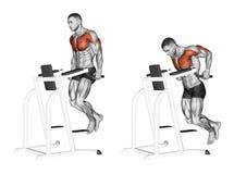exercising Inmersiones en el simulador libre illustration