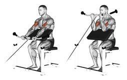 exercising Kabel peacher krul royalty-vrije illustratie