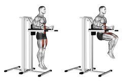 Exercising. Knee Raise on parallel bars. Knee Raise on parallel bars. Exercising for bodybuilding. Target muscles are marked in red. Initial and final steps