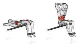 exercising Levanta el torso en un banco de la pendiente Fotografía de archivo