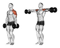Exercising. Lifting dumbbell in hand royalty free illustration