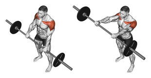 Exercising. Lifts forward stock illustration