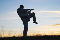 Exercising martial arts  Royalty Free Stock Photo