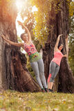 Exercising In Nature. Two beautiful women exercising in the park Stock Image