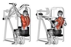 exercising Omgekeerde pulldown van de greepmachine lat vector illustratie