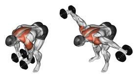 exercising Pesa de gimnasia de elevación a disposición a inclinarse adelante Fotografía de archivo