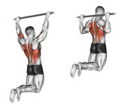 Exercising. Pull-ups On The Bar, Touching The Back Stock Images