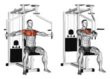 Exercising. Reduction of arms simulator butterfly. Reduction of arms simulator butterfly. Exercising for bodybuilding. Target muscles are marked in red. Initial Stock Images