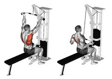 Free Exercising. Reverse Grip Lat Pulldown Royalty Free Stock Photography - 68612577