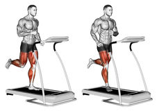 Exercising. Run. Run. Exercising for bodybuilding Target muscles are marked in red stock illustration