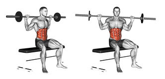 Exercising. Seated Barbell Twist Stock Images