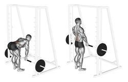 Free Exercising. Smith Machine Dead Lifts Stock Photos - 68285373