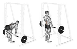 Exercising. Smith Machine dead lifts. Smith Machine dead lifts. Exercising for bodybuilding. Target muscles are marked in red. Initial and final steps royalty free illustration