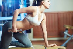 Exercising in sport club Royalty Free Stock Image