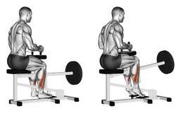 exercising Stijging op tenen voor soleus in simulator Stock Foto's